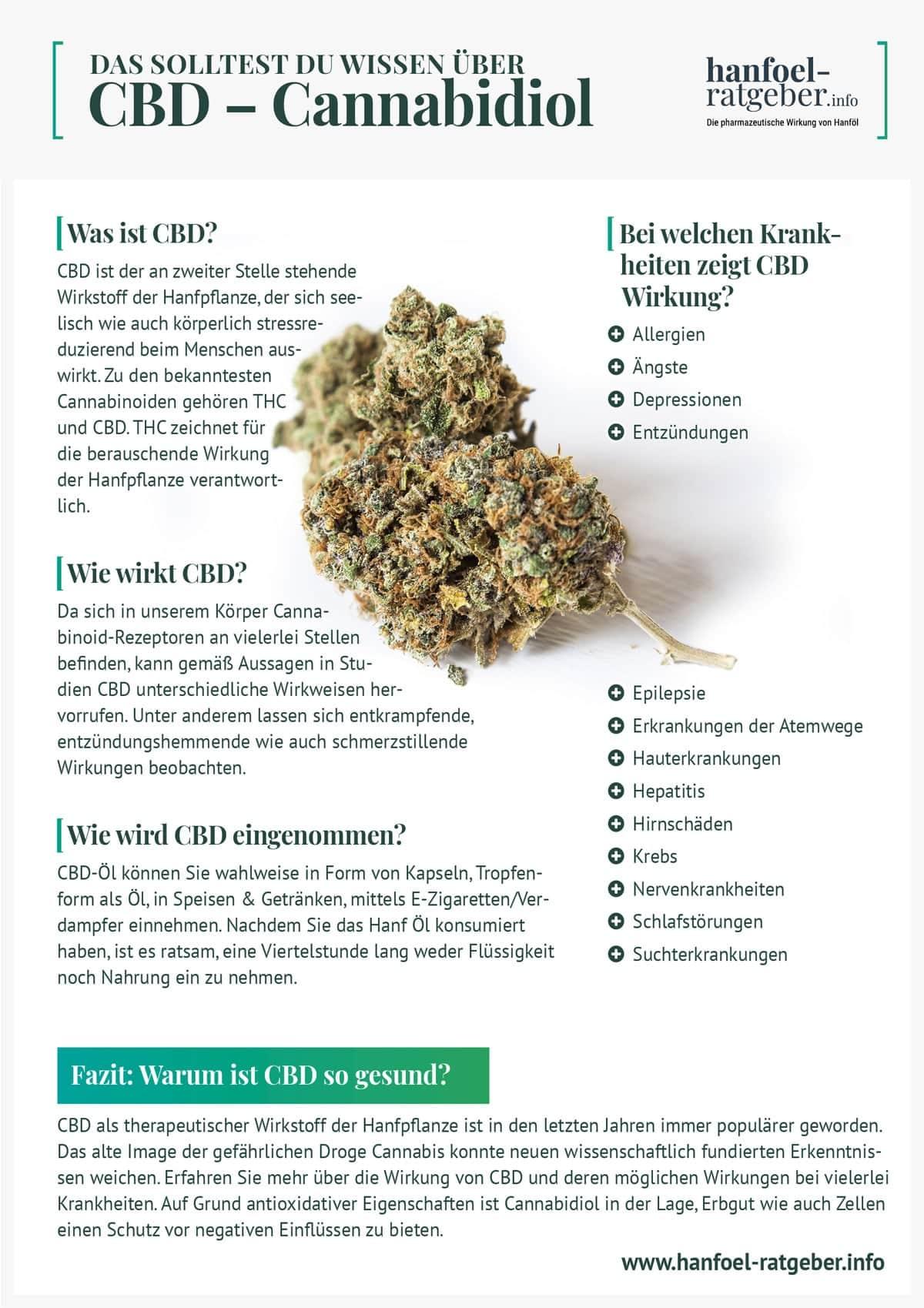 infografik_CBD_Hanfoel-Ratgeber